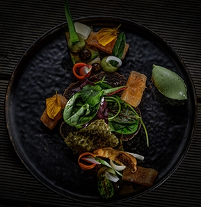 Photography recipe Char (Salvelinus) // Avocado // Wild herbs // Verveine