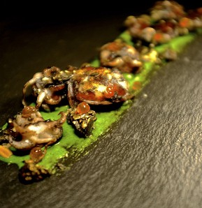 Photography recipe Baby cuttlefish, watercress, crunchy seeds and salmon roe